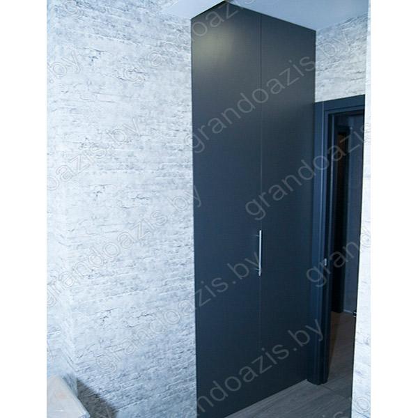 Шкаф-Купе R169
